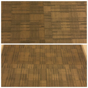 Difference in Carpet Colors